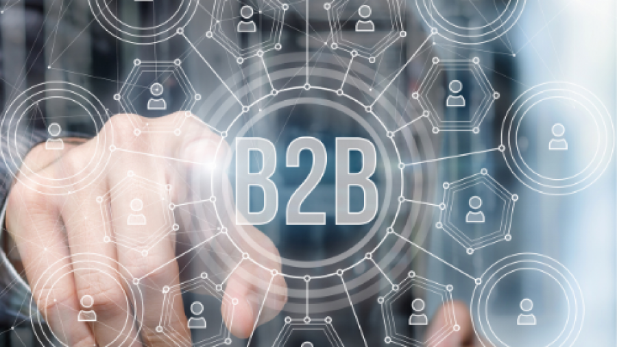 Strategy Execution B2B
